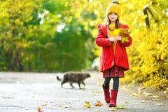 Cute little girl having fun on beautiful autumn day Royalty Free Stock Photos