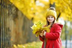 Cute little girl having fun on beautiful autumn day Stock Images