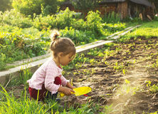 Cute little girl having fun at countryside Stock Images