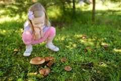 Cute little girl having fun during forest hike on beautiful summer day. Child discovered some mushrooms in the woods. Active family leisure with kids Stock Photo