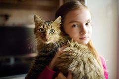 Cute little girl with her cat at home. Adorable child holding het pet kitty. Kids and animals stock photo