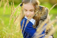 Cute little girl with her cat on sunny autumn day. Adorable child holding het pet kitty. stock image