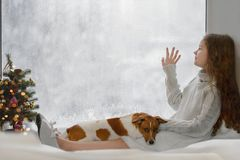 Cute little girl and her puppy jack russell sitting by the windo royalty free stock photo