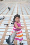 A cute little girl  with herd of pigeons. Stock Photography
