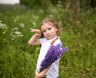 A cute little girl holding a bouquet of bright blue field flowers Royalty Free Stock Image