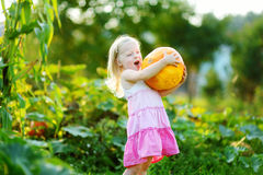 Cute little girl holding a pumpkin Stock Photo