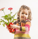 Cute little girl holding vase with flowers. Portrait of a beautiful little girl holding vase with flowers looking at the camera smileing on white background Royalty Free Stock Image