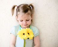 Cute little girl  holding yellow gerbera flowers. Royalty Free Stock Photo