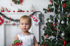 Cute little girl holds a red berries  near  New Year  Christmas. Tree Royalty Free Stock Photo