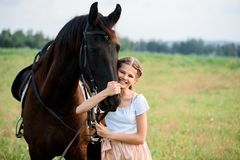Cute little girl on a horse in a summer field dress. sunny day stock photography