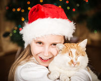 Cute little girl hugging her cat in Christmas Stock Image