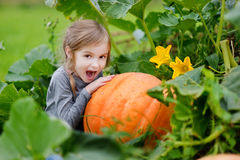 Cute little girl hugging a pumpkin Stock Photo