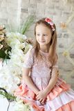 Cute Little Girl In Spring Studio Royalty Free Stock Photography