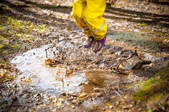 Cute little girl jumping in muddy puddle. Wearing yellow rubber overalls. Happy childhood. Sunny autumn forest Royalty Free Stock Image