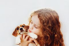Cute little girl kissing a puppy jack russell dog. Stock Photo