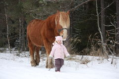 Cute little girl leading big draught horse in winter Royalty Free Stock Photography