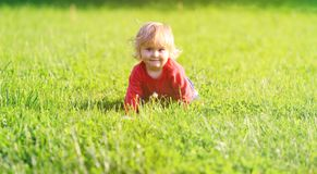 Cute little girl learning to crawl on summer lawn Royalty Free Stock Image
