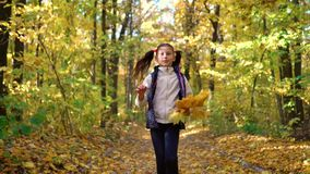 Cute little girl looks at camera and runs towards moving camera in autumn forest stock video
