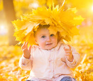 Cute little girl among maple leaves Royalty Free Stock Images