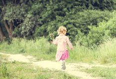 Cute little girl on the meadow Royalty Free Stock Photos