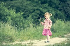 Cute little girl on the meadow Stock Image