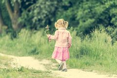 Cute little girl on the meadow Royalty Free Stock Images