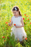 Cute little girl in a meadow with wild spring flowers Royalty Free Stock Photo