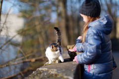 Cute little girl met a cat outdoors Royalty Free Stock Image