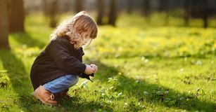 Cute little girl outdoors portrait in spring sunny day. Charming curly sweet girl during stroll in sunny park royalty free stock images