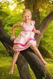 Cute little girl in the park Royalty Free Stock Photography