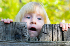 Cute little girl peering over a rustic fence. Cute little blond girl peering over an old weathered rustic fence watching with her mouth open against a background Royalty Free Stock Photos