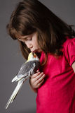 Girl with a cockatiel. Cute little girl with a pet cockatiel in her hand royalty free stock photo