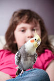 Girl with a cockatiel Royalty Free Stock Photo