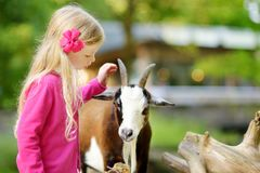 Cute Little Girl Petting And Feeding A Goat At Petting Zoo. Child Playing With A Farm Animal On Sunny Summer Day. Stock Image