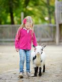 Cute little girl petting and feeding a goat at petting zoo. Child playing with a farm animal on sunny summer day. Royalty Free Stock Images