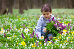 Cute little girl picking flowers Royalty Free Stock Photos