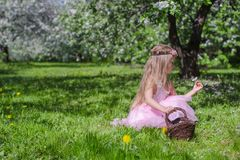 Cute little girl picking flowers in blossoming. Little adorable girls with butterfly wings under blossoming apple tree Royalty Free Stock Image