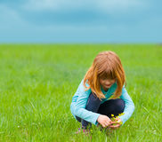 Cute little girl picking flowers on the meadow. On cloudy spring day Royalty Free Stock Photo