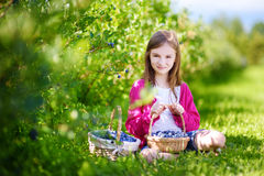 Cute little girl picking fresh berries on organic blueberry farm. On warm and sunny summer day Stock Images