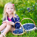 Cute little girl picking fresh berries on organic blueberry farm. On warm and sunny summer day Stock Photo
