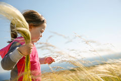 Cute little girl picking grasses Royalty Free Stock Photos