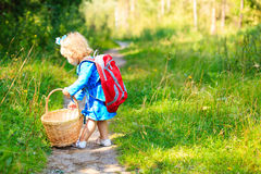 Cute little girl picking mushrooms in forest Royalty Free Stock Image