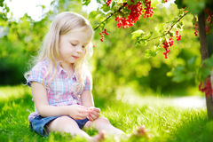 Cute little girl picking red currants in a garden Royalty Free Stock Images