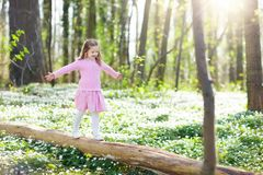 Child in spring park with flowers. Cute little girl in pink dress playing in blooming spring park with first white wild anemone flowers. Child on Easter egg hunt Royalty Free Stock Photos