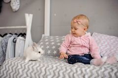 Cute little girl playing with white rabbit royalty free stock photography