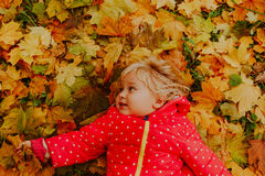 Cute little girl playing with autumn fall leaves Royalty Free Stock Photo