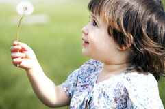 Cute little girl playing with a dandelion,outdoor Stock Images