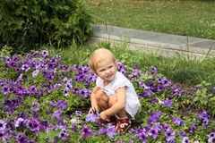 Cute little girl playing with flowers Stock Images
