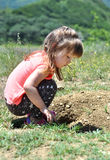 Cute little girl is playing with grass in caucasus mountains Stock Photo