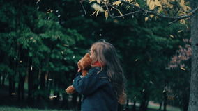 Cute little girl playing with her teddy bear hugs and holds it to her yellow leaves fall on them from the tree slow mo. Close-up funny, cheerful beautiful cute stock video footage